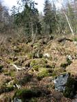 Kamenné pole v Kujavách