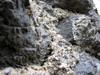 Detail na murivo