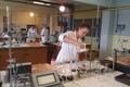 Stredná priemyselná škola chemická a potravinárska v Humennom