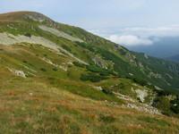 Svahy a vrchol Bartkovej